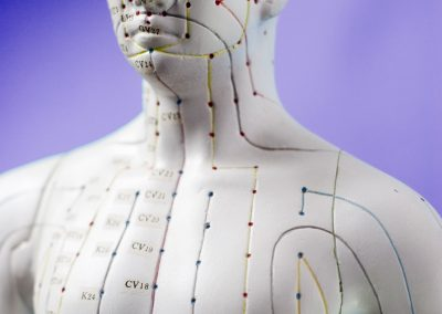 Acupuncture Point Locations – Video Series