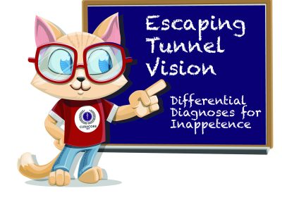 C.A.T – Episode 1. Escaping Tunnel Vision – Differential Diagnosis for Inappetance