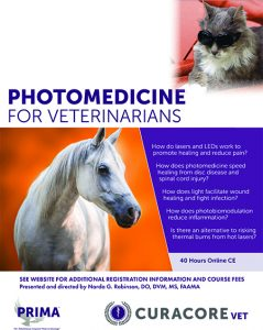 PhotoMed_Brochure_Thumbnail