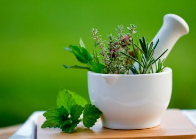botanical medicine courses